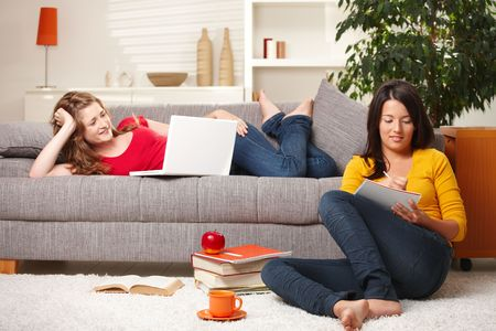 Schoolgirls learning together in living room with books and computer. Stock Photo - 6374084