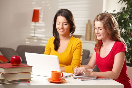 room mate: Pretty schoolgirls learning at home looking at laptop computer at table smiling. Stock Photo