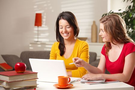 online learning: Laughing schoolgirls looking at laptop, blond girl pointing at screen. Stock Photo