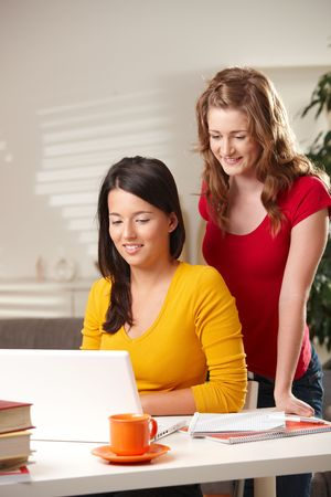 Pretty schoolgirls learning at home looking at laptop at table smiling. photo