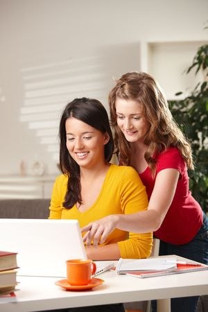 Smiling schoolgirls looking at laptop, girl pointing at screen. Stock Photo - 6373861