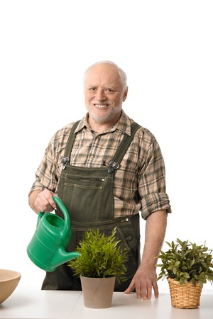Smiling elderly man watering plants, cutout. photo