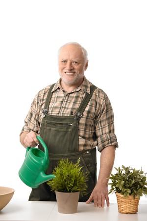 Smiling elderly man watering plants, cutout. Stock Photo - 6941499