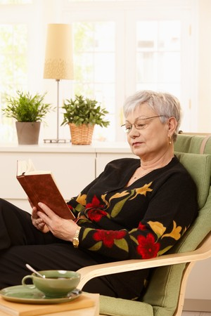 Female pensioner wearing glasses sitting at home in armchair, reading. Stock Photo - 7217309