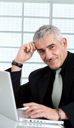 Gray haired creative director working on laptop computer at office, smiling. Stock Photo - 7400632