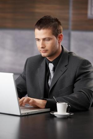 Elegant businessman working on laptop, sitting at desk. Stock Photo - 8747364