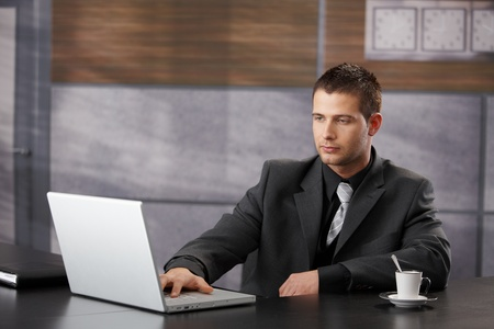 Top manager working on laptop in fancy office. Stock Photo - 8747339