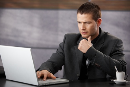 Young handsome businessman using laptop in elegant office. Stock Photo - 8747346