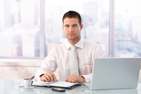 Handsome businessman sitting at desk in bright office, having laptop and organizer.