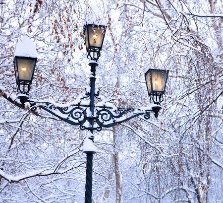 lamp post: Lampada di inverno, vecchi post coperto da neve nel parco cittadino.