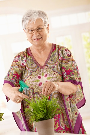 boomers: Happy senior woman watering plant at home, smiling. Stock Photo