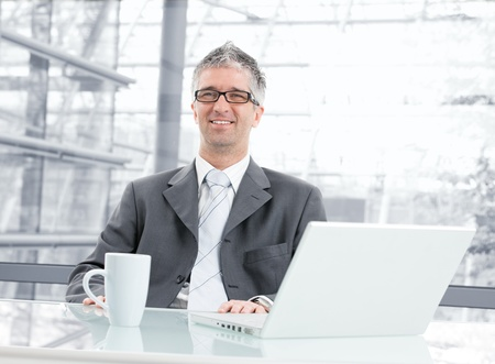 gratified: Businessman sitting at desk in corporate office, working with laptop computer. Looking at camera, smiling.  Stock Photo