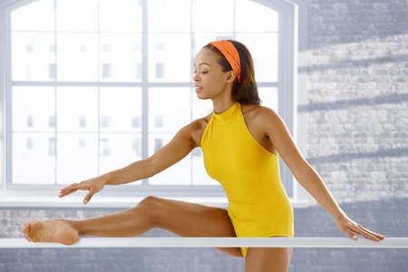 Ballet dancer stretching at bar, concentrating on training. Stock Photo - 9249525
