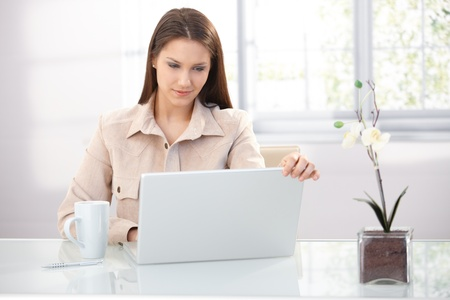 Youn businesswoman working at home, using laptop, smiling. photo