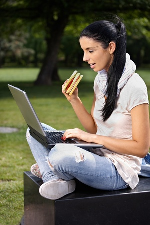 sandwitch: College student using laptop in park, having lunch in springtime.