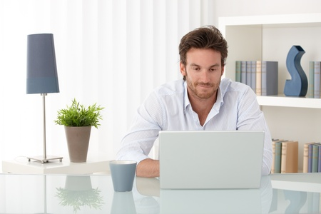 guy with laptop: Handsome sitting at living room table, using laptop computer at home, smiling, looking at screen.