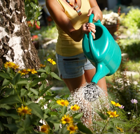 watering plants: Young woman torso watering plants in the garden at summertime. Stock Photo
