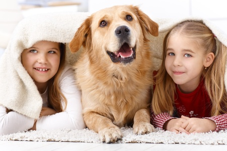 dogs play: Little sisters and pet dog having fun at home, lying prone on floor, smiling under blanket.