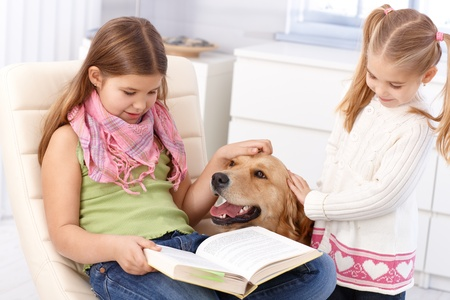 Schoolgirl studying at home while stroking golden retriever with sister, smiling. Stock Photo - 13250650