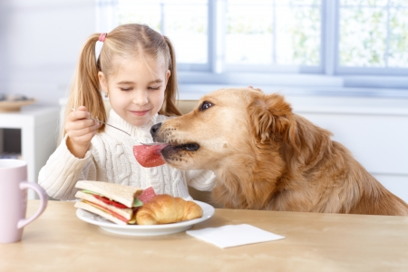 good morning: Little girl feeding dog from her own plate by fork, smiling.