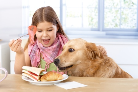 sandwitch: Little girl and pet dog having breakfast together, eating sandwitch.
