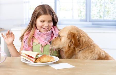 niños desayunando: Niña comiendo en la mesa, sonriendo perro que se sienta a su lado.