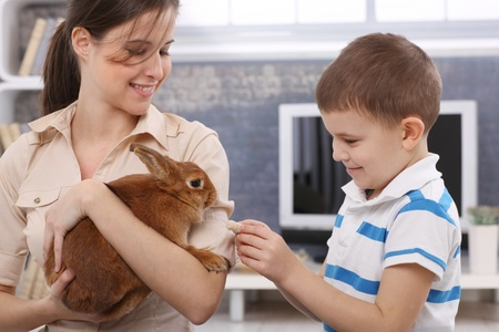 Smiling boy feeding cute pet rabbit handheld by happy young mother. Stock Photo - 13214613