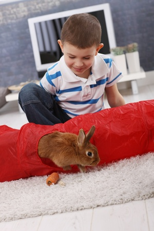 Cute boy playing with pet bunny climbing out of rabbit toy on living room carpet, having carrot. photo