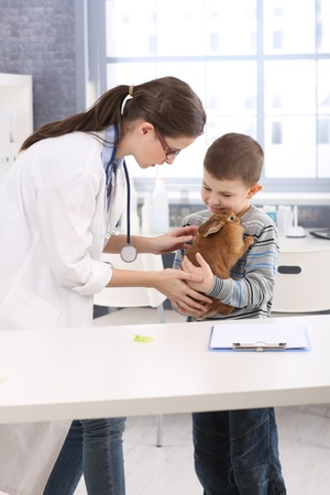 Young vet helping little boy holding rabbit at pets' clinic. Stock Photo - 13214594