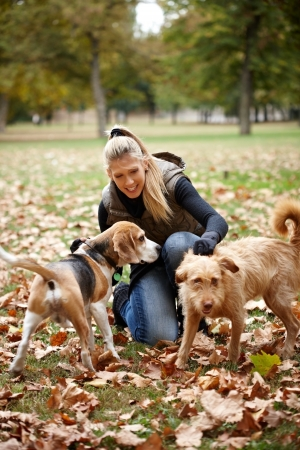 Attractive blonde girl stroking dogs in autumn park, smiling. photo