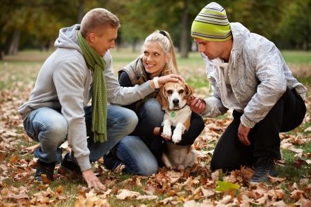 Happy young friends stroking dog in park at autumn. photo