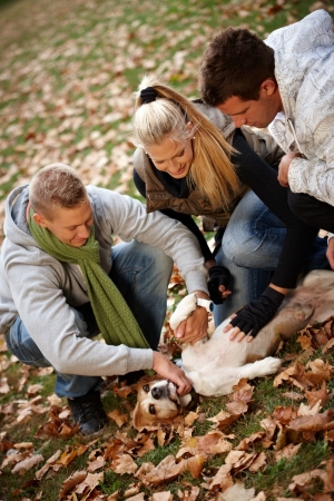full size: Happy young people stroking dog in park at autumn. Stock Photo