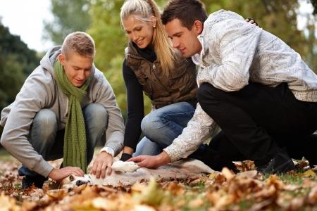 Jóvenes amigos se divierten en el parque de otoño, acariciando perros, sonriendo.