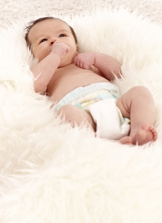 Newborn baby lying in fur sucking thumb. Stock Photo - 17159674