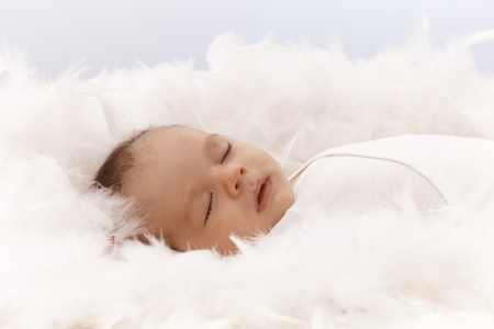 Lovely newborn baby sleeping among feathers.