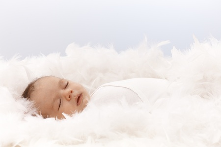 Lovely newborn baby sleeping in feather nest. Stock Photo - 17159689