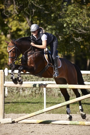 jumping fence: Horsewoman haciendo saltar caballo sobre una cerca. Foto de archivo
