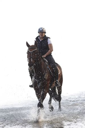horse riding: Young horsewoman horse riding in the water.