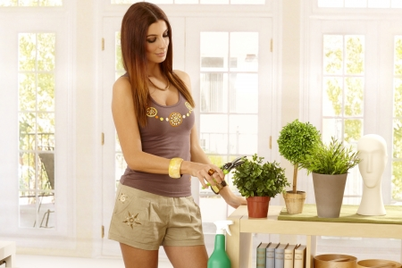 pruning shears: Young woman pruning plants with pruning shears at home. Stock Photo