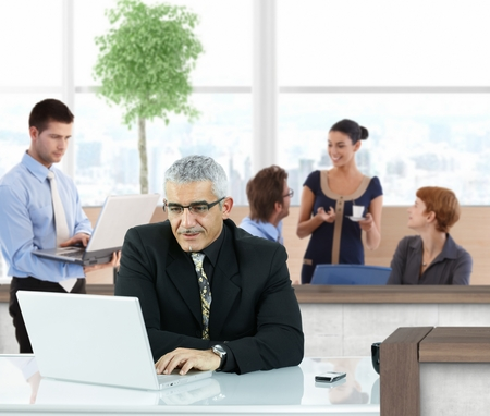 Mature businessman working with laptop in office hallway. Stock Photo - 23527920