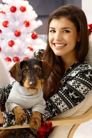 lap dog: Attractive young woman holding dog on lap, smiling front of christmas tree.