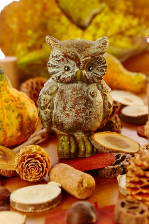 autumn colors: Autumn decoration with autumn colors, owl, pineal. Stock Photo