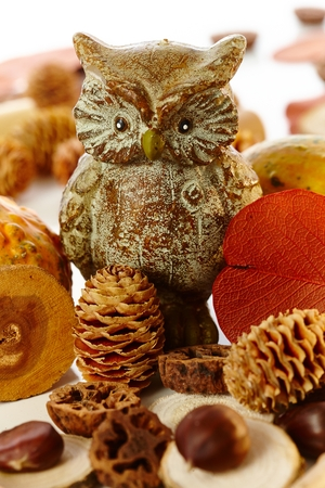 pineal: Autumn decoration with owl and autumn fruits, pineal and chestnut.
