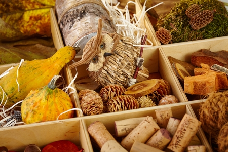 pineal: Different autumn decoration accessories stored in a wooden compartment. Stock Photo