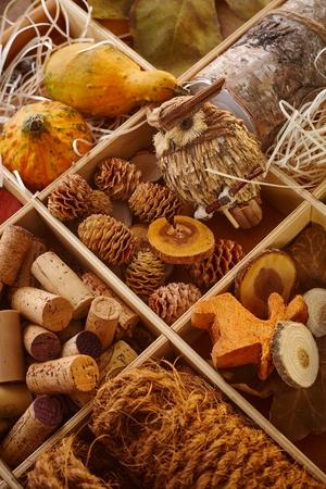 pineal: Closeup photo of autumn decor ingredients, owl, cork, pineal. Stock Photo