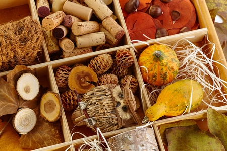 pineal: Autumn decoration accessories stored in a wooden compartment.