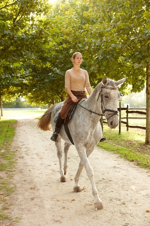 Young woman riding beautiful horse in the green. Stock Photo