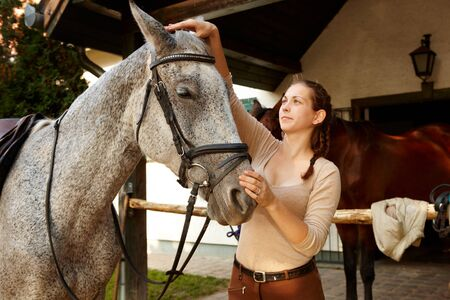 reins: Young woman harnessing horse outdoors over stall putting on reins. Stock Photo