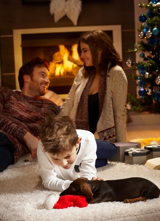 Little boy caressing dachshund puppy receiving for christmas, parents at background. photo
