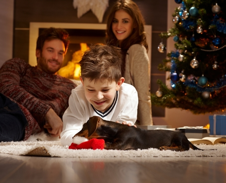 tenderly: Little boy caressing and playing with dachshund puppy received for christmas.
